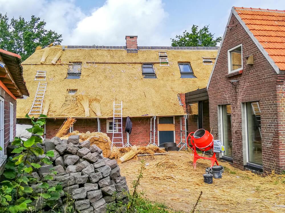 Hollandia 2019 nádtetőkészítés